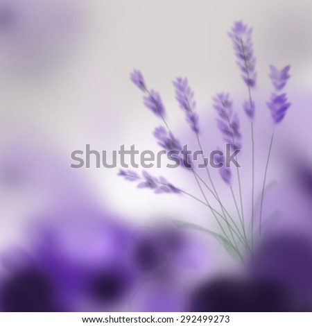Lavender bouquet on purple background. Digital hand painting. - stock photo