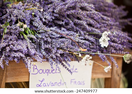 Lavender bunches selling in an outdoor french market. Horizontal shot with selective focus - stock photo