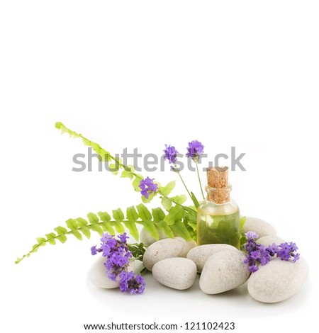 Lavender, fern, essential oil and white stones - stock photo