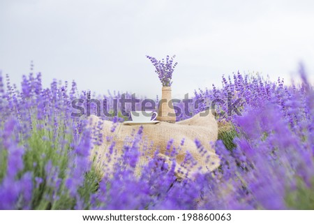 Lavender flower composition on field with vase and cup. - stock photo