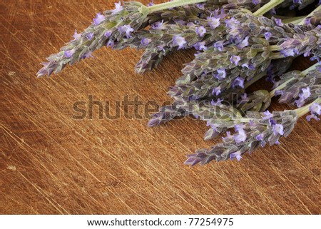 lavender flowers on wood backround - stock photo