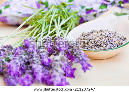 Lavender fresh and dry flowers  - stock photo