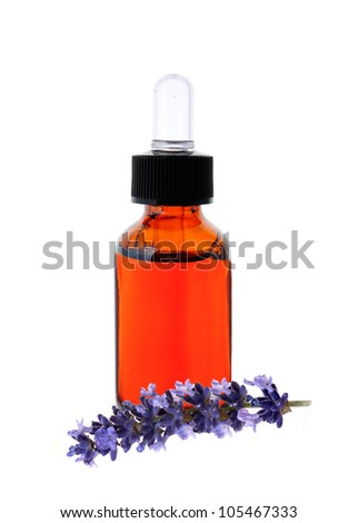 Lavender herb flower leaf sprigs with an aromatherapy essential oil dropper bottle, isolated on white background - stock photo