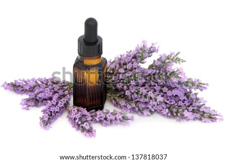 Lavender herb flower sprigs with aromatherapy essential oil bottle over white background. - stock photo