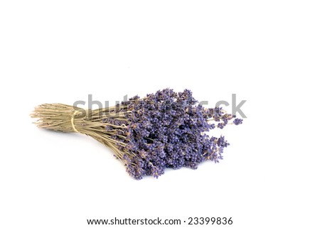 Lavender herb flowers dried in a bunch, over white background. - stock photo