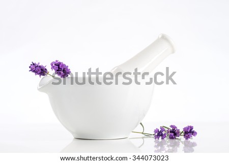 Lavender herb leaves  ceranic mortar  - stock photo