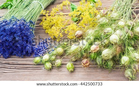 Lavender, lady's mantle, black cumin  - stock photo