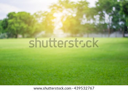 Lawn blur with soft light for background - stock photo