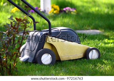 Lawn mower and daisies - stock photo