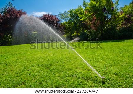 Lawn Sprinkler In Sunny Park - stock photo