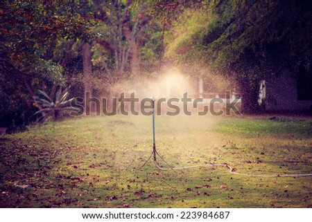 Lawn sprinkler spraying water over green grass at summer. Vintage filter. - stock photo