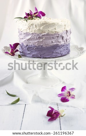 Layer Cake with Chocolate, Vanilla and Berry Cream Filling - stock photo