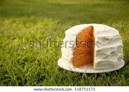 Layered Orange Cake in Grass - stock photo