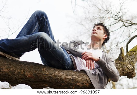 Laying on tree branch - stock photo