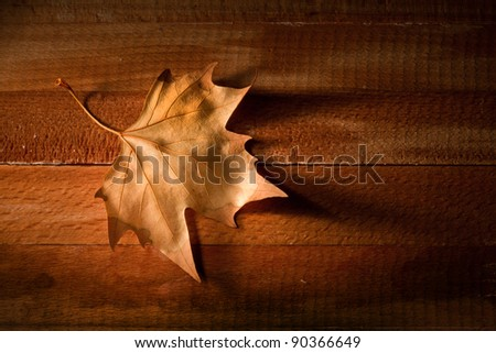 Leaf  over wooden background - stock photo