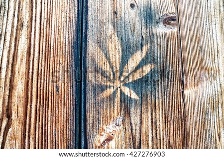 Leaf stencil on wooden wall in daylight - stock photo
