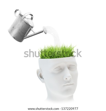 Learning and mental development concept - grass growing out of a head - stock photo