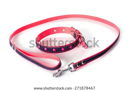 leash and collar in front of white background - stock photo
