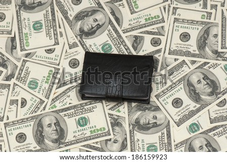 Leather purse cards on background of American money. Studio photo - stock photo