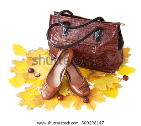 Leather shoes and bag with autumn leaves. Shoes and bags collection sales - stock photo