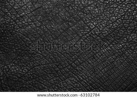 leather texture black - stock photo