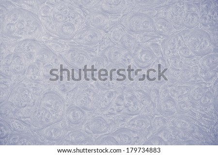 leather texture / skin texture with skin cell patterns - stock photo