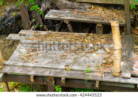 leaves dry and fall down on wood background - stock photo