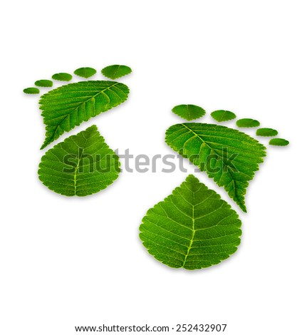 leaves footprints on a white background, relating to the environment, back view  - stock photo