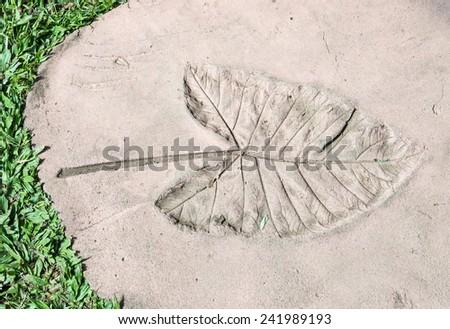 Leaves Imprint in the sandstone of urban park. - stock photo