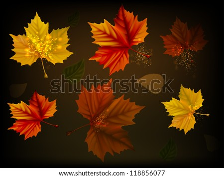 Leaves in autumn colors on a brown background/Leaves in autumn - stock photo