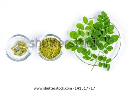 leaves of the Bitter cucumber-chinese (Moringa oleifera Lam.) Processed into Bitter cucumber-chinese. Powder packed in capsules.  - stock photo