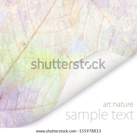 leaves of trees Grunge pink background vintage abstract rusty colored - stock photo