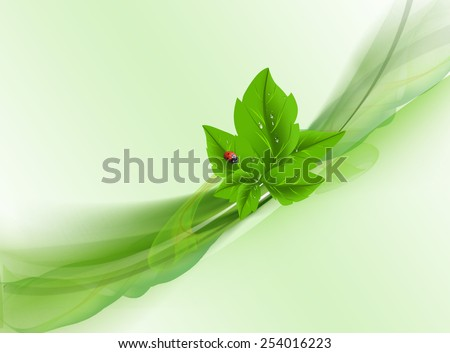 Leaves with ladybug  and drops. - stock photo
