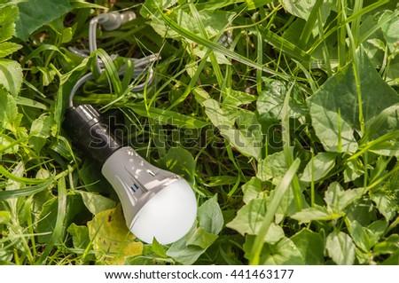 LED Bulbs are environmentally friendly energy alternative on the grass  - stock photo