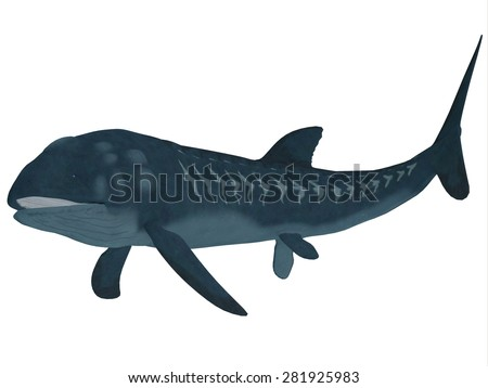 Leedsichthys Fish over White - Leedsichthys was a carnivorous fish that inhabited Jurassic Seas that could grow to be 53 feet long. - stock photo