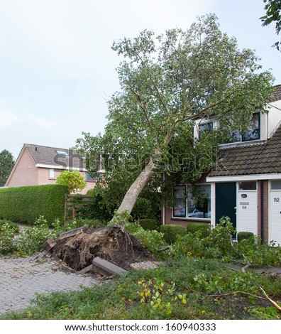 LEEUWARDEN, NETHERLANDS, OKTOBER 28, 2013: Massive storm hit the north of the Netherlands, total damage has been estimated at over 100 million euro. - stock photo