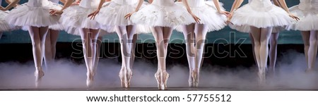 leg of ballerinas - stock photo