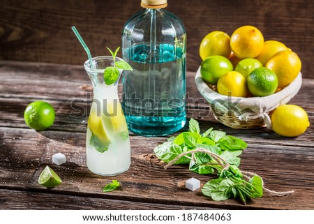 Lemon drink with mint leaf and citrus fruits - stock photo