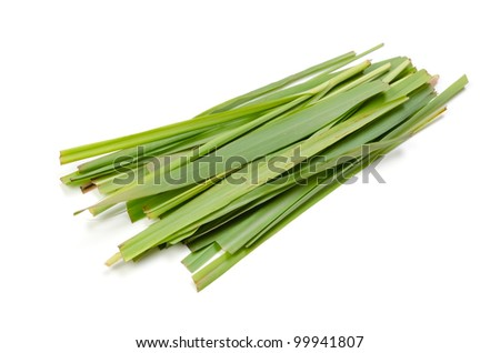 lemon grass - stock photo