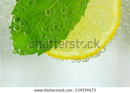 Lemon slice, mint leaf and soda - stock photo