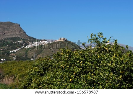 Lemon trees with the town to the rear, Alora, Mijas Costa, Malaga Province, Andalucia, Spain, Western Europe. - stock photo