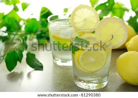 Lemon water with fresh lemons and green plants - stock photo