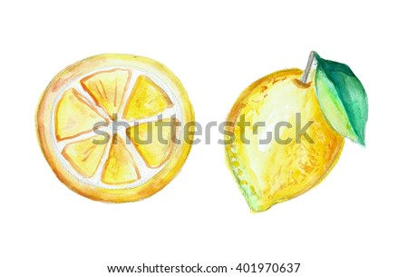 lemon watercolor, hand drawn illustration, isolated  - stock photo
