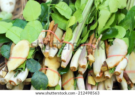 Lemongrass, galangal, kaffir lime leaves for soup. - stock photo