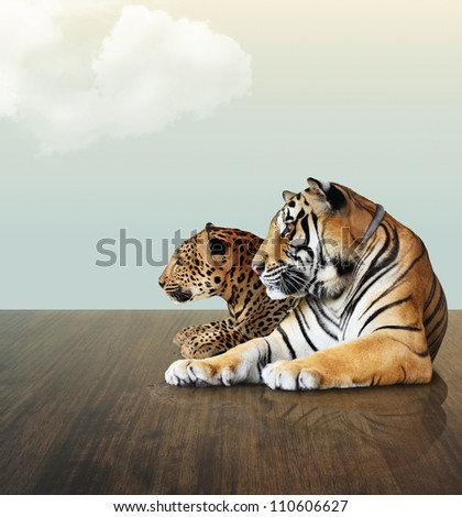 Leopard and tiger  under the sky with cloud on wood floor - stock photo