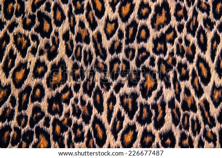 Leopard, jaguar, lynx skin background - stock photo