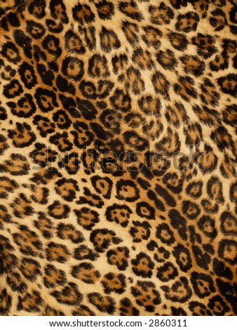 Leopard print background - stock photo