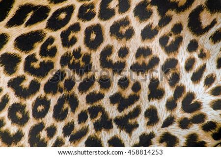leopard print fabric texture - stock photo