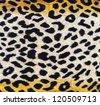 Leopard texture - stock photo