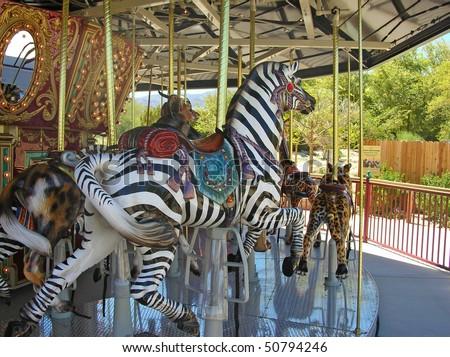 Let's ride a zebra - stock photo